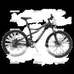 Sewa Wimcycle Panthera